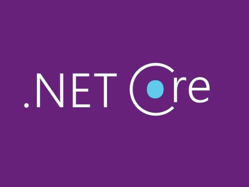 توضیحات کلی درمورد Net 5.
